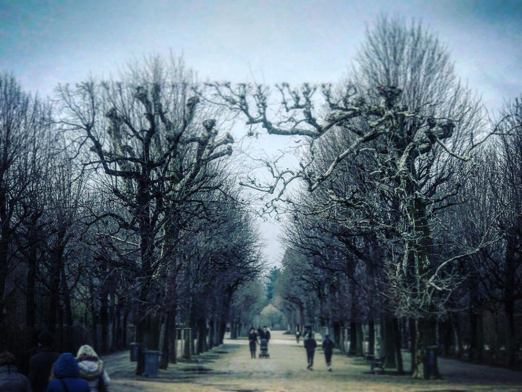 Triumphal arch trees park botanic garden schnbrunn Palace Royal cultivationhellip